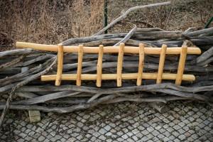 Garten Rankgerüst Pflanzen Kletterhilfe Spalier Dresden Tischlerei